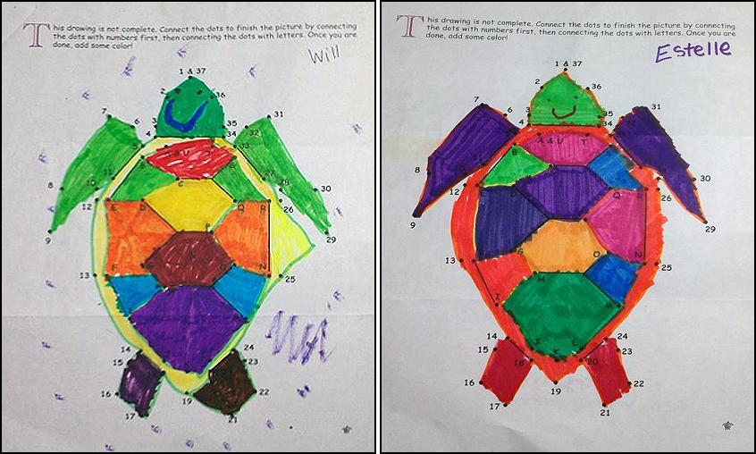 Turtle Art by Will and Estelle