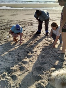 The team measures one of the widest crawls we've seen in a while! Big mom, big nest??