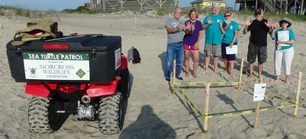 The team shows 13 fingers for sea turtle nest #13