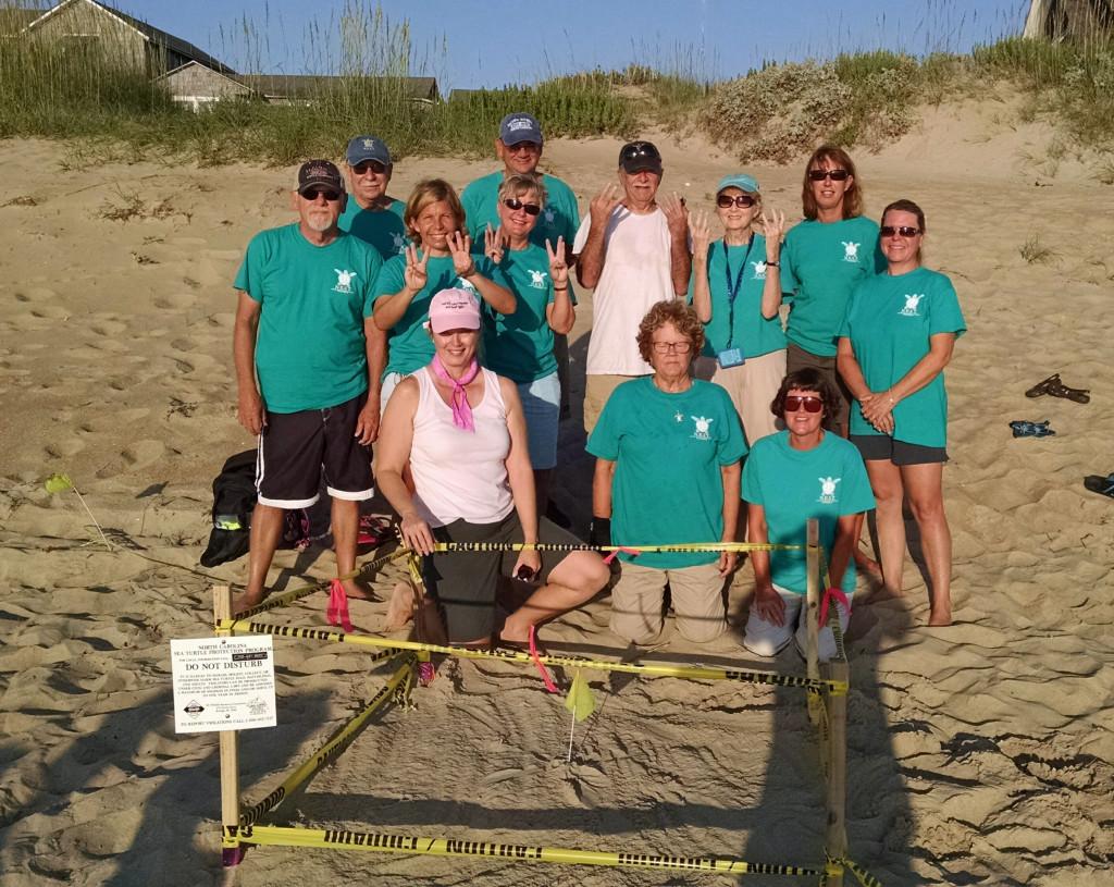 sea turtle nest #33 reponse TEAM