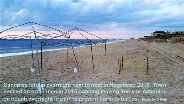 Beach Hazard Canopies
