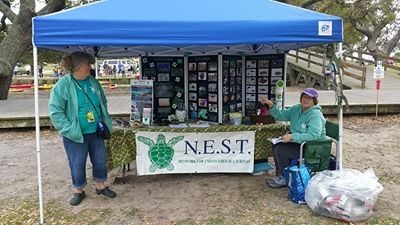 NEST education team is busy talking sea turtles