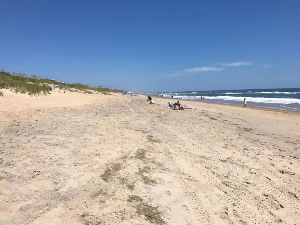 Bad news for sea turtles on the Outer Banks - Network for ...