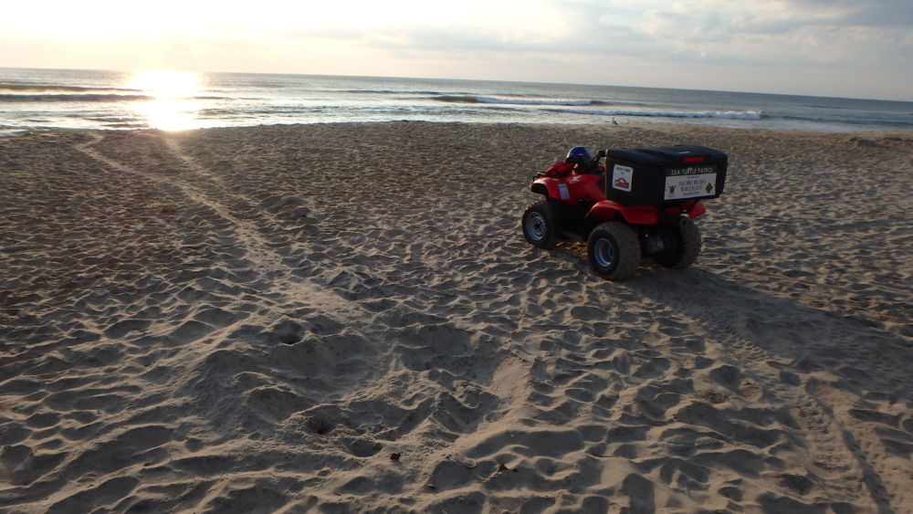 2018 Sea Turtle nesting season begins . . .  zoom zoom