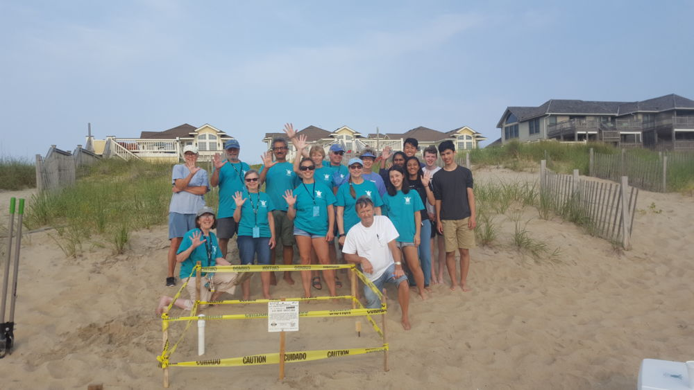 Outer Banks Active Sea Turtle Nest Status